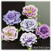 Lilleput Roses Lila 6-pack